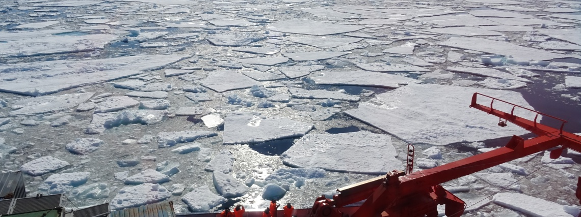 Ice floes floating on the sea